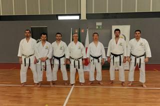 KagawaShihanPortugal22-23.2.2014.jpg